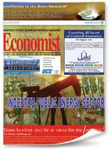 Indebted Public Energy Sector