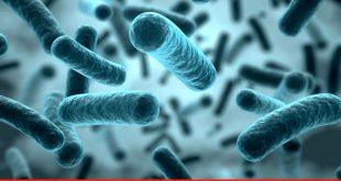World on the road to post-antibiotic era