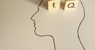 The IQ test wars: why screening for intelligence is still so controversial