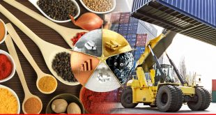 Pakistan's commodities export and trades with UAE soar in July-Oct 2017