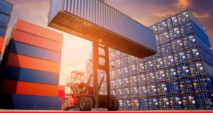 Understanding reasons for paltry exports