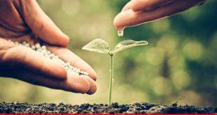 Improving agriculture key benefit to eliminate food shortage
