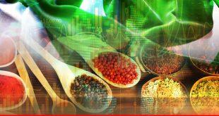 IMPACT OF RISING COMMODITY PRICES ON PAKISTAN'S ECONOMY