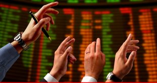 Shaky state of the economy: A review of stock market performance