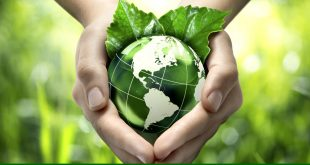 Going green initiative: need of the hour!