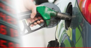 Review of petroleum prices