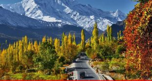 Role of e-tourism and CPEC in boosting tourism industry