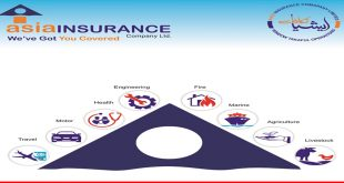 Asia Insurance at a glance