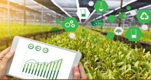 Digitization of agricultural sector