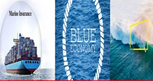 Ocean risk and insurance: an emerging new development paradigm of the blue economy