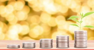 Islamic economy: lot of prospect but yet achieved?
