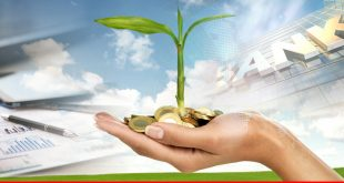 Role of microfinance banks in poverty reduction and economic growth