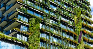 Urban greening can save species, cool warming cities, and make us happy