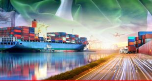 Review of exports and imports during fiscal 2018-19