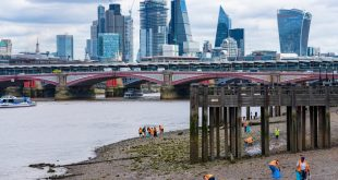 Microplastic pollution and wet wipe 'reefs' are changing the River Thames ecosystem