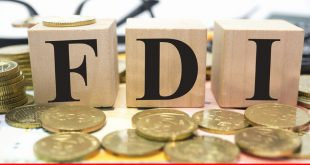 Review of global FDI and savings