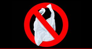 Ban on plastic bags with global perspective