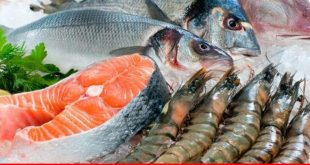 Falling seafood exports; policy overhaul needed