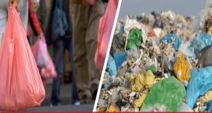 Plastic packaging and environment risks