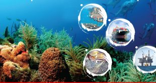 Sustainable blue economy: moving beyond fish and ships