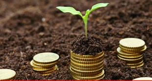 Microfinancing plans taking stride in Pakistan