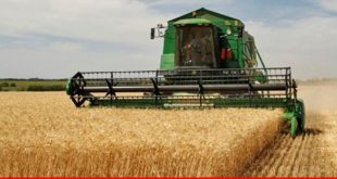 Farmers need easy access to funds for increasing productivity