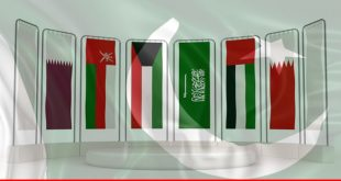 An undivided GCC is in Pakistan's favor