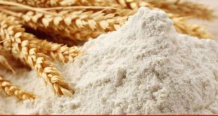 Brewing wheat crisis in Pakistan: a fact of fiction
