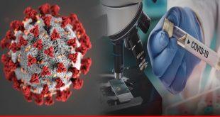 Coronavirus Pandemic: what next?