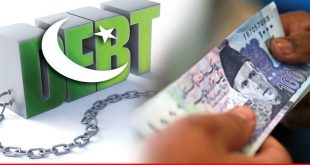Review of public debt in Pakistan