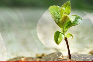 Role of microfinance under sustainable growth of Pakistan