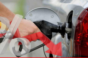 Benefits of lower interest rates and fuel prices