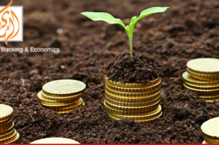 How Islamic microfinance can help during COVID-19 situation? and AlHuda (CIEMF) plans toward it