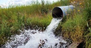 Culverts – the major threat to fish you've probably never heard of
