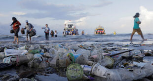 This is how much plastic scientists now think is at the bottom of the ocean