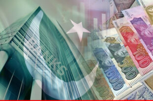 Pakistan banks: driving engine of country's economy