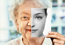 Scientists develop a new gene therapy to delay aging