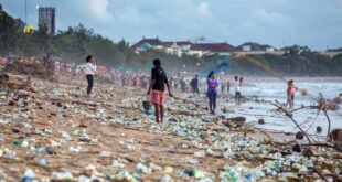 Why ocean pollution is a clear danger to human health