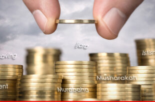 Islamic financial instruments – a conceptual framework