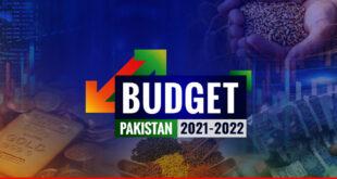 Budget 2021-22: an attempt to balanced approach?