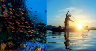 The Ocean: Life and Livelihood
