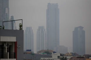 52% of the world's greenhouse gas emissions come from just 25 cities