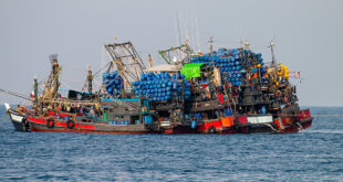 Putting an end to billions in fishing subsidies could improve fish stocks and ocean health